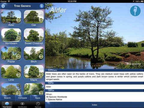 TreeId - The British Tree Identification Guide iPad Screenshot 1