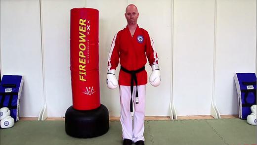 Blue Belt Kick Jutsu