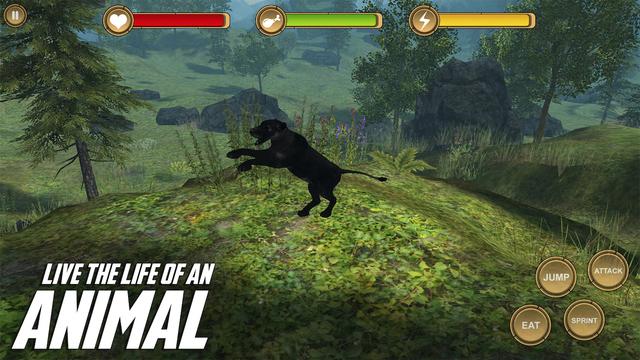 Jaguar Simulator HD Animal Life