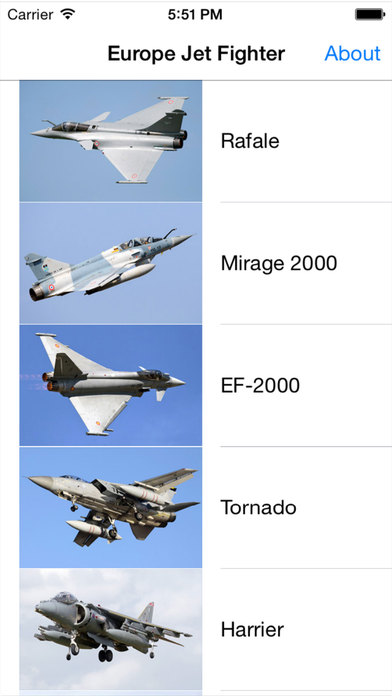Europe Jet Fighter For iPhone iPhone Screenshot 1