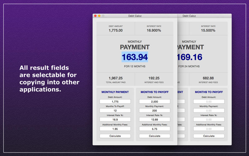 Debt Calcz Screenshot - 4