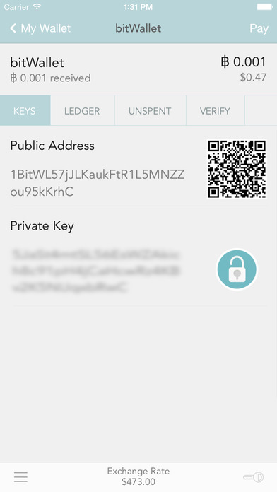 how to send bitcoin with key