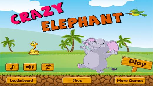 Crazy Elephant Run - Great Adventure