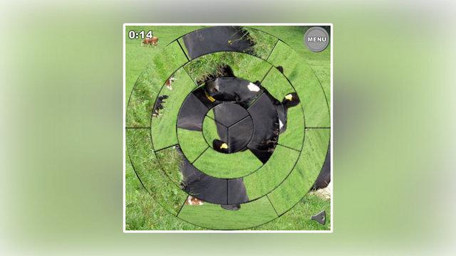 Jig Circle-Free