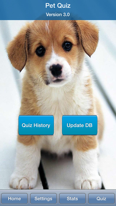 pet quiz on the app store