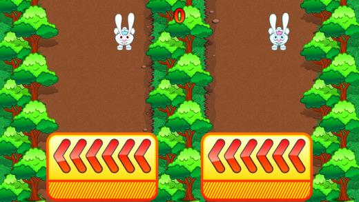 Rabbit Rush Run