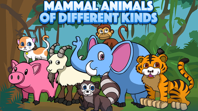 Mammal Animals of Different Kinds
