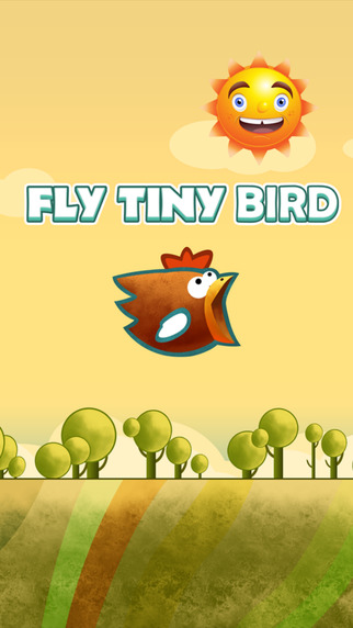 Fly Tiny Bird