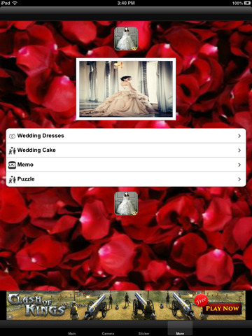 Your Wedding Dress Editor