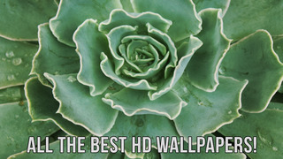 """Wallpapers HD 高清<font color=""""red"""">壁纸</font>"""