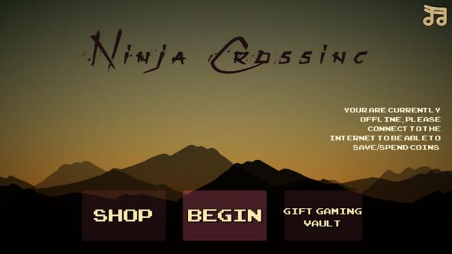 Ninja Crossing