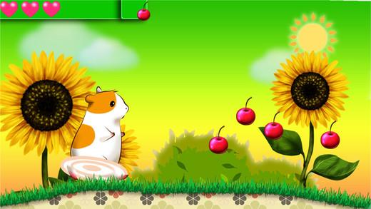 Hamster's Dream Land