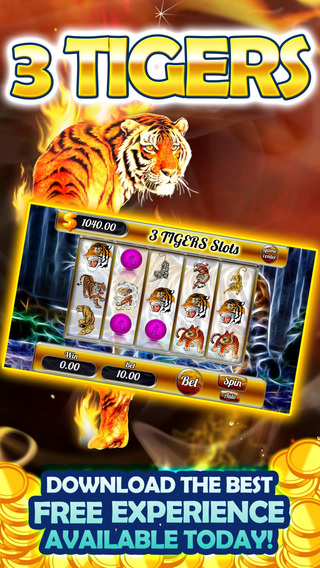 African King Tiger Tresure Slots-win progressive payout with new chip bonus