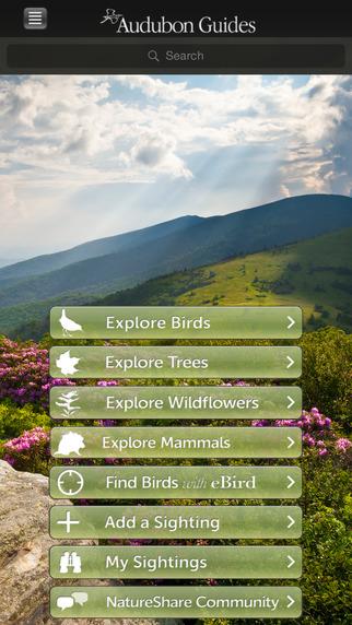 Audubon Guides Box Set - Birds Tree Wildflowers Mammals