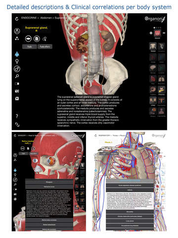 3D Organon Anatomy Screenshots
