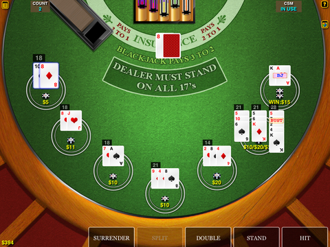 BlackJack Multi-Hand HD FREE for iPad iPad Screenshot 2