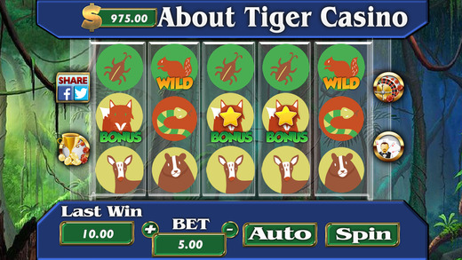 AAAbout Tiger Casino