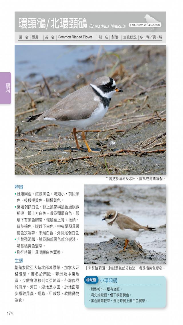 download 台灣水鳥圖鑑 apps 3