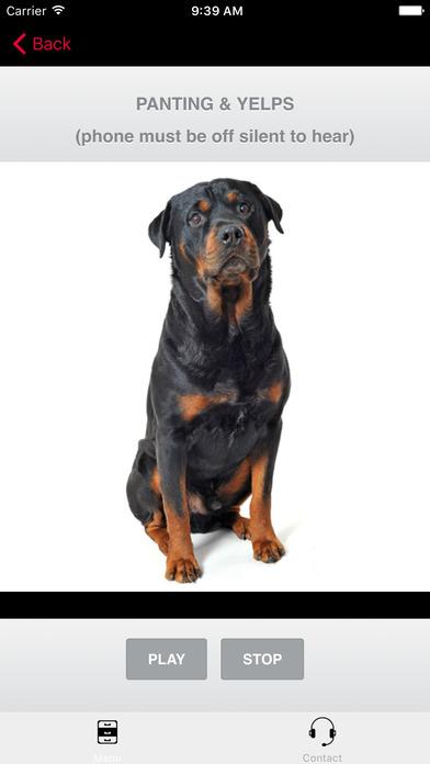 Rottweiler Dog Barking Sounds