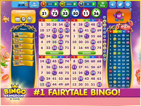 Kingdom of Bingo Review – Expert Ratings and User Reviews