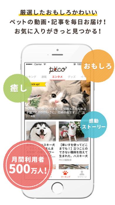 PECO[ペコ] 犬猫の厳選ペット動画 on the App Store
