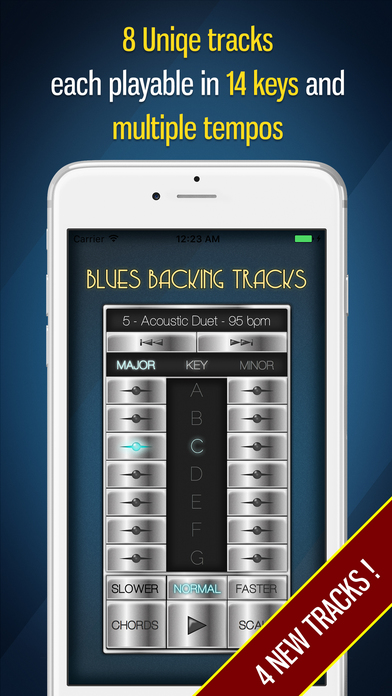 Blues Backing Tracks iPhone Screenshot 1