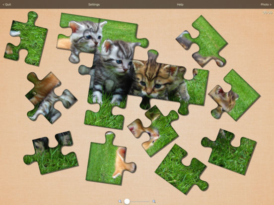 Real Puzzle - MultiShape Jigsaw LITE iPad Screenshot 1
