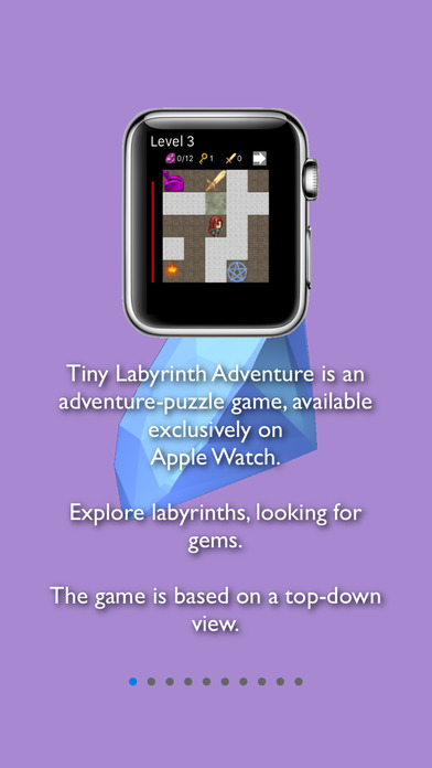 Tiny Labyrinth Adventure Screenshot