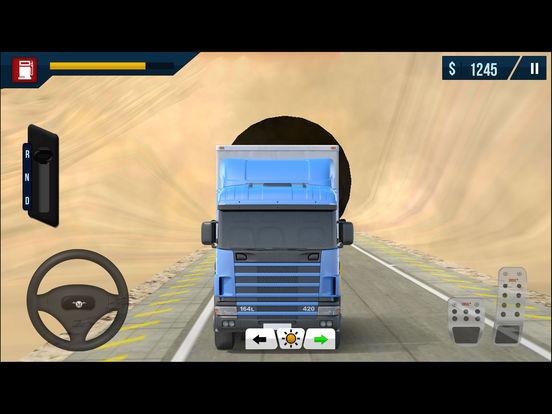 Arab Cargo Truck Driving Simulator Pro screenshot 7