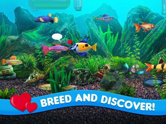 Benefits one of the Best 3D Fish Screensavers