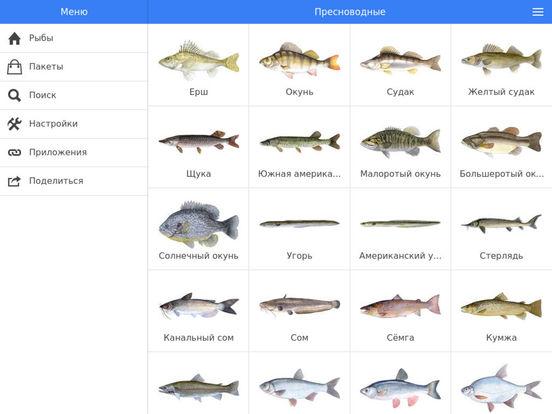 рыбалка стоимость рыбы