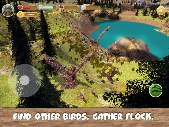 Wild Bird Survival Simulator Full screenshot 6