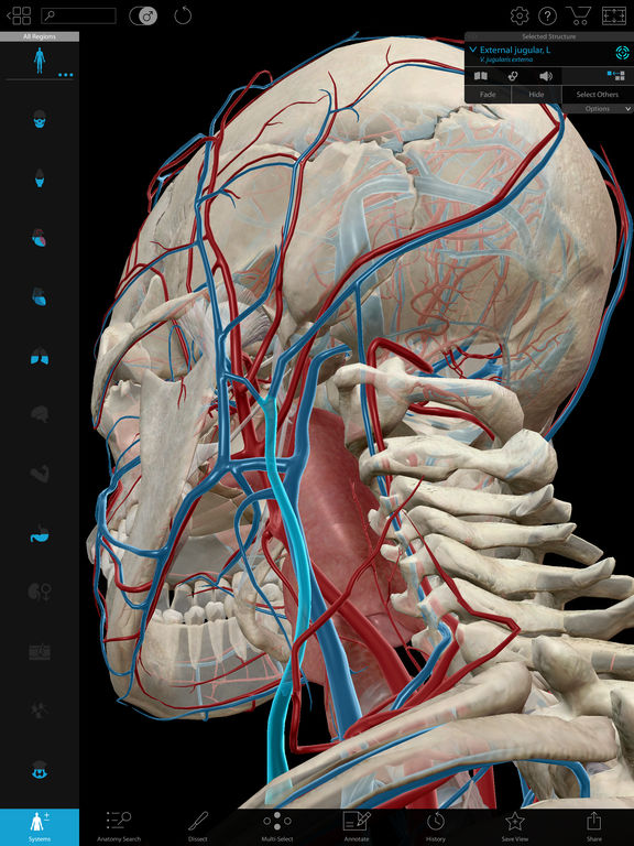 Screenshot #2 for Human Anatomy Atlas 2018 - Complete 3D Human Body