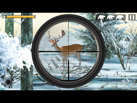 Bear Jungle Attack screenshot 9