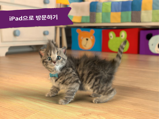 내가 가장 좋아하는, 귀여운 새끼고양이 앱스토어 스크린샷