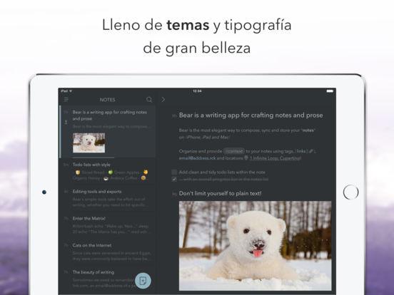 Bear - La atractiva aplicación de escritura