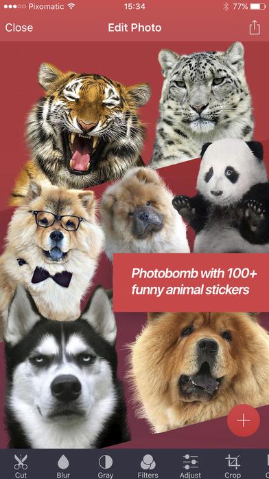 Pixomatic - layer based photo editor Screenshots