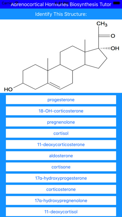 steroid conversion app