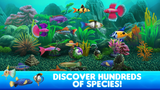 Fish tycoon 2 virtual aquarium on the app store for Fish tycoon 2 guide