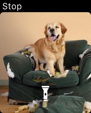 Screenshot #13 for Dog Monitor