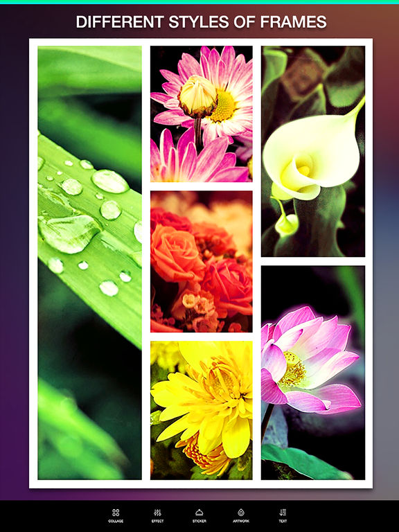 Layout Camera Collage Pro – Pic Frame Editor and Perfect Camera Effects Screenshots