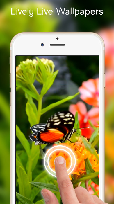 Cute Live Wallpapers Free For Iphone Apprecs