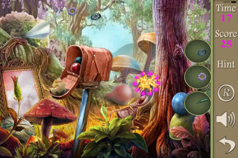 Hidden Objects Of The Enchanted Forest screenshot 2