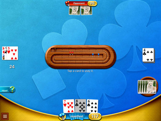 Cribbage Premium iPad Screenshot 4