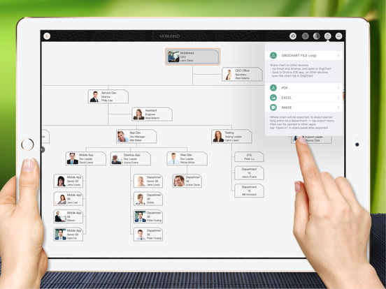 OrgChart - Organization Chart for Business,Project Screenshots
