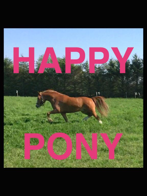 Happy Pony by Horse Reader screenshot 1