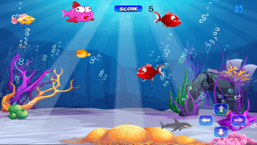 A big frenzied fish game underwater feeding mania on the for Fish mania game