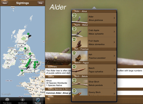 Winter TreeId - British Isles Tree Guide iPad Screenshot 5