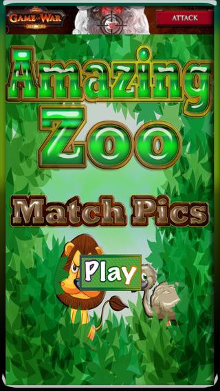 Amazing Zoo - Match Pics