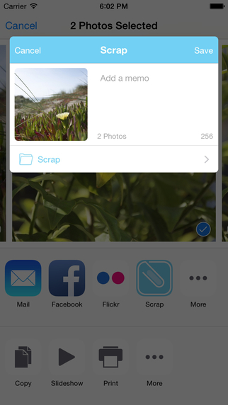Scrap - copy and share